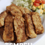 Tempeh Japanese Syogayaki Recipe. Syogayaki is usually with pork but this is vegan version. Ginger, mirin and soy sauce marinade turns an simple taste tempeh into delicious Japanese style main dish.