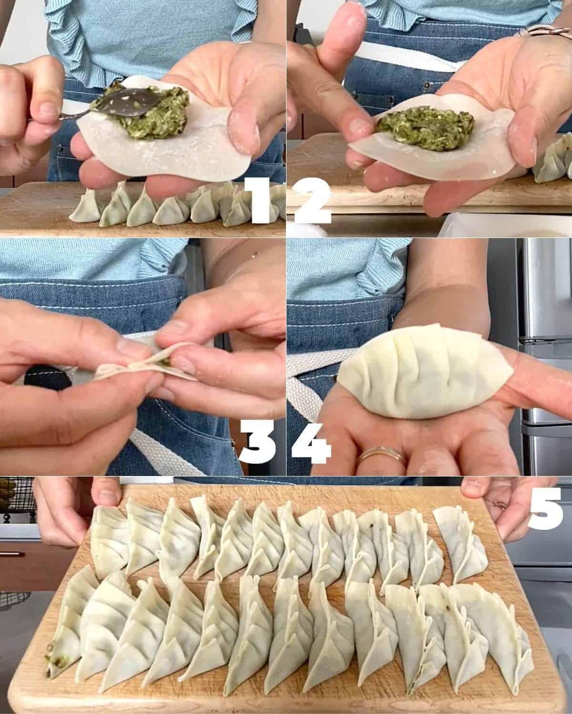 How to make Japanese Vegan Vegetable Gyoza