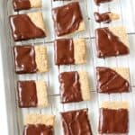 Chocolate Covered Whole Wheat Cookies